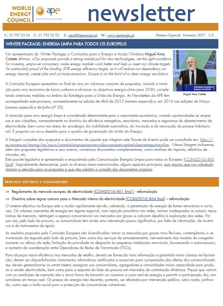 Newsletter APE Edição Especial_fev2017
