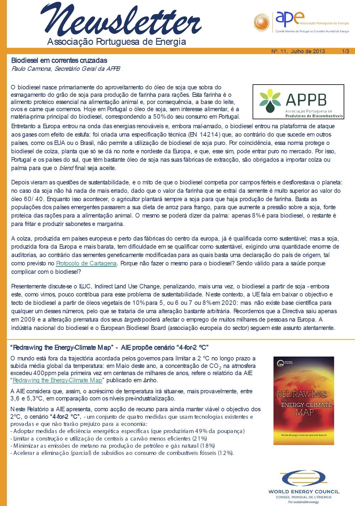 Newsletter APE numero 11_Julho 2013
