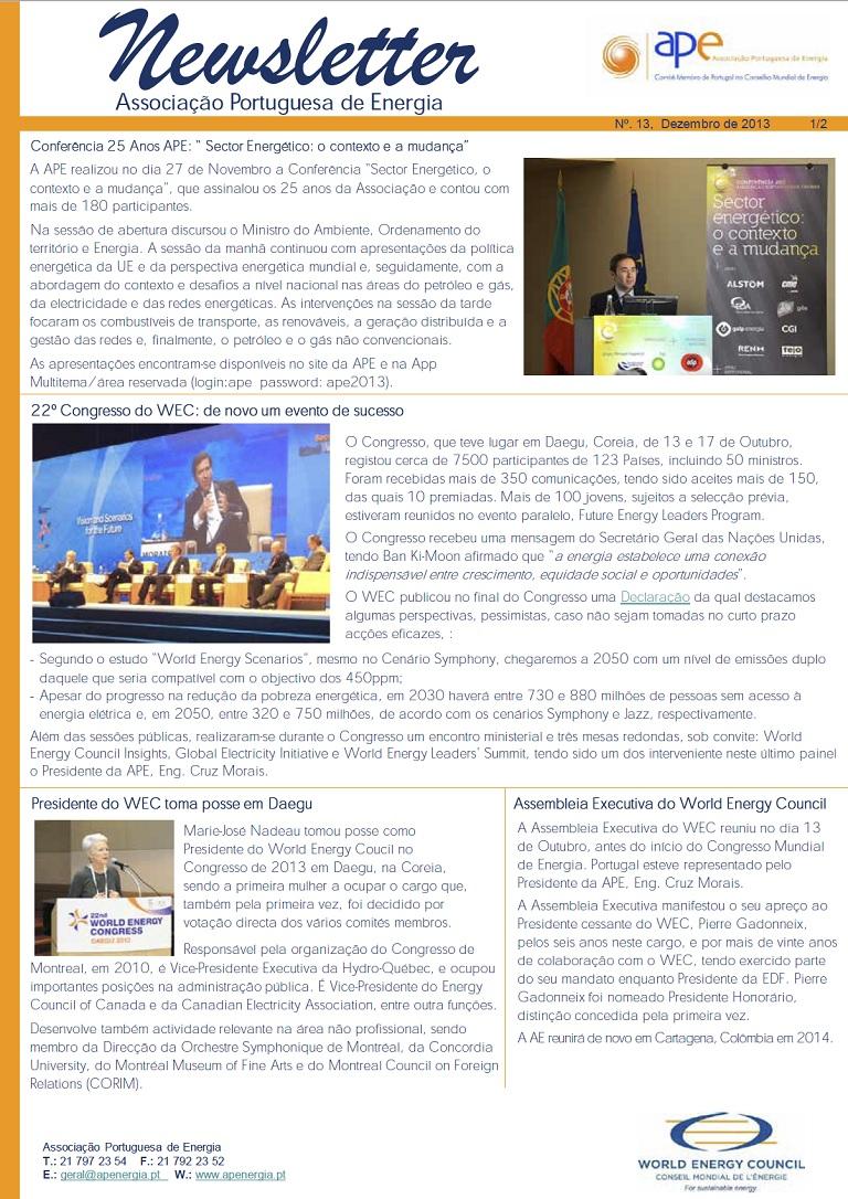 Newsletter APE numero 13_Dezembro2013