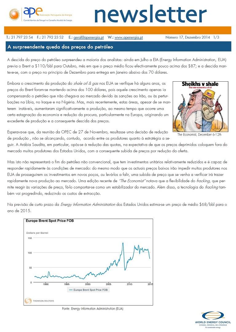 Newsletter APE numero 17_Dezembro 2014