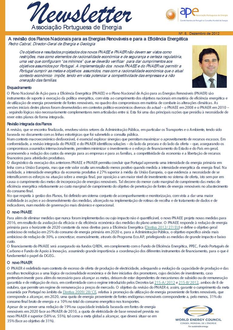 newsletter APE n 8 dezembro2012