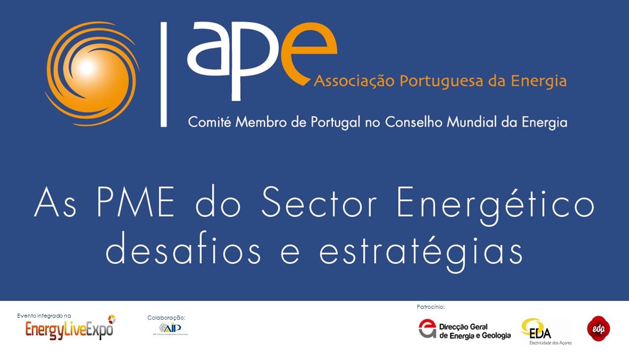 seminário APE2013
