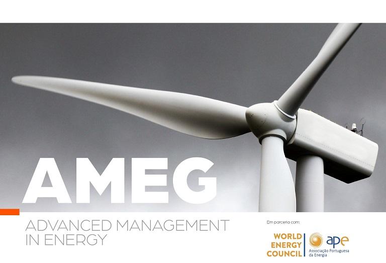 AMEG - Advanced management in energy